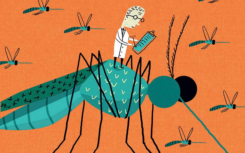 sci_mosquito_patch