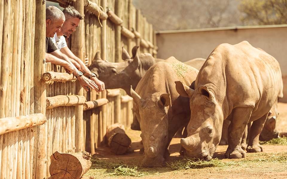 care-for-wild-rhino-sanctuary-2