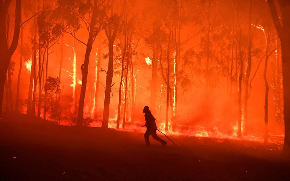 2019-11-19t111127z_115304481_rc2aed9cbe5b_rtrmadp_5_australia-bushfires