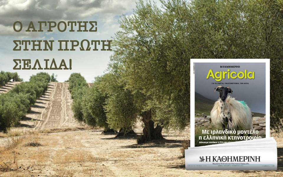 45_agricola_digital-banners_templates_960x600