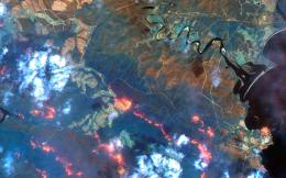 2020-01-13t000000z_1107784899_rc2pee91fy1s_rtrmadp_5_australia-bushfires
