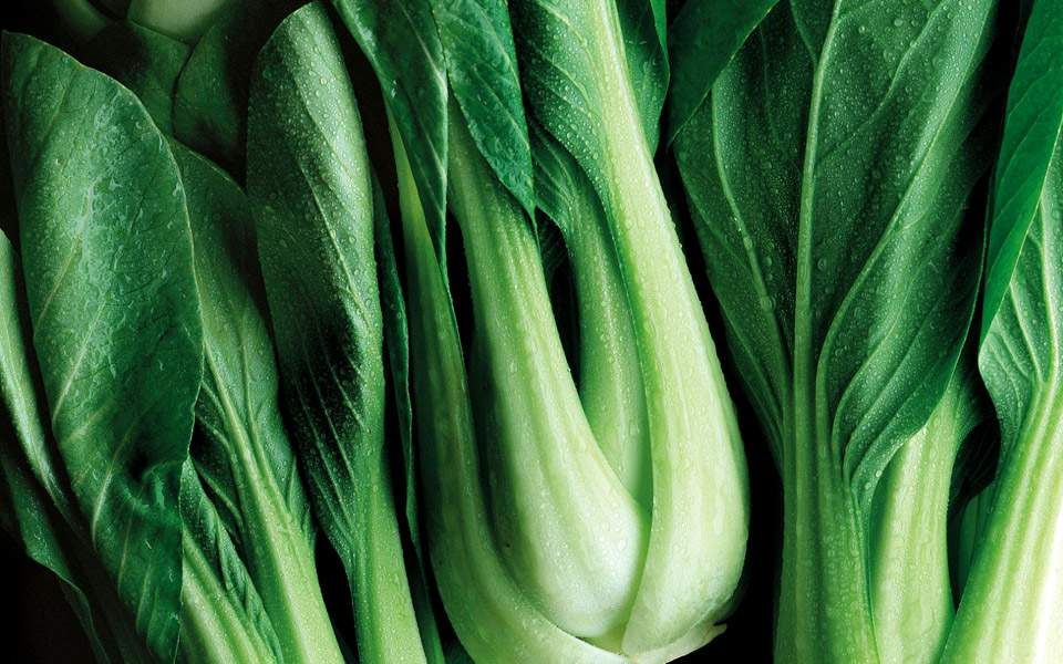 nor_bokchoy