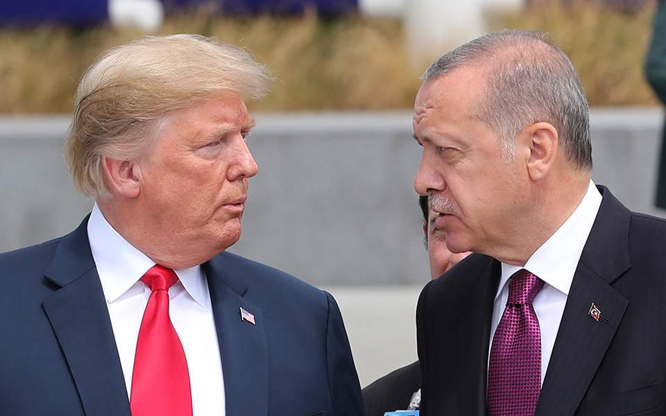 trumperdogan-thumb-large