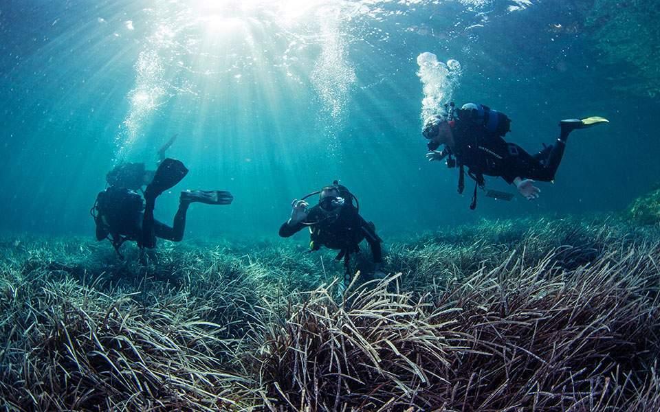 Αποψη: Σύγχρονες προκλήσεις στο θαλάσσιο περιβάλλον της Ανατ. Μεσογείου