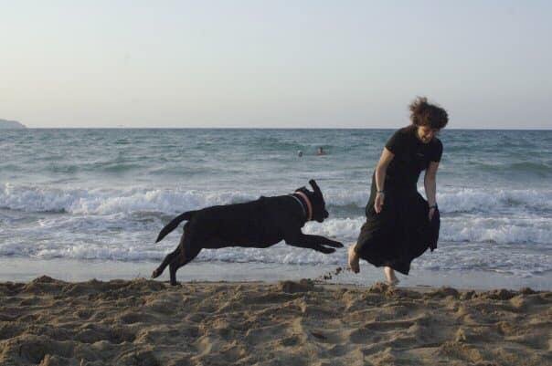 Πέθανε η Λάρα - Ήταν ο πρώτος σκύλος οδηγός τυφλών στην Ελλάδα 2